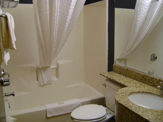 Microtel Inn & Suites by Wyndham Chili/Rochester Airport: Bathroom -molded 1-piece tub surround and granite counter