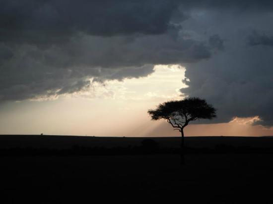 Rekero Camp, Asilia Africa: African Sunset