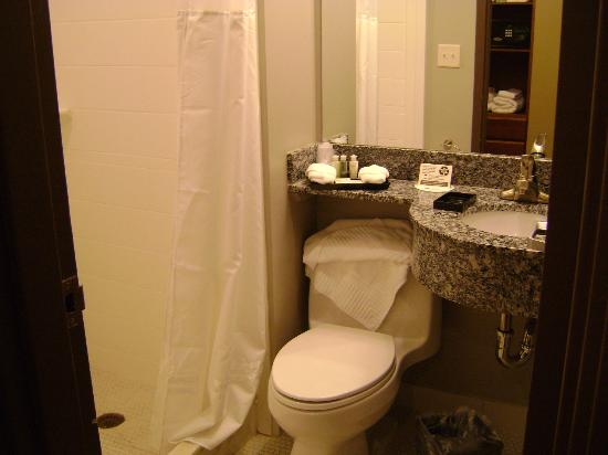 The East Avenue Inn & Suites: Nice bathroom but too small with limited counter space