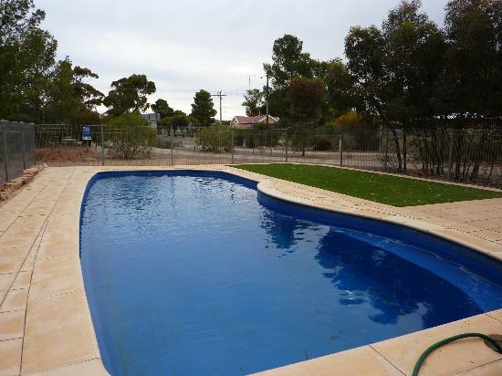 Hawker Caravan Park: Caravan Park swimming pool