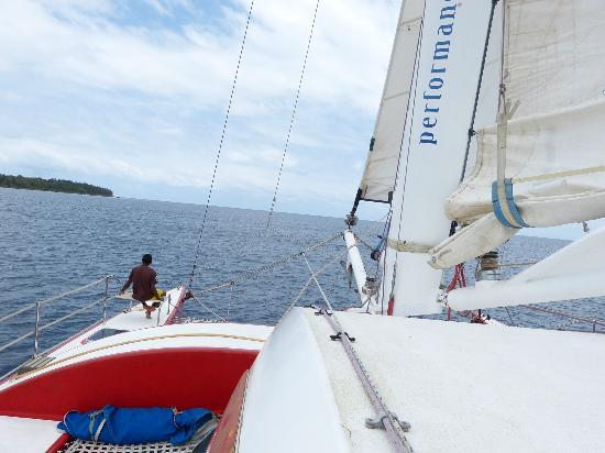 Performance Marine Sailing Charters: cruising across the bay