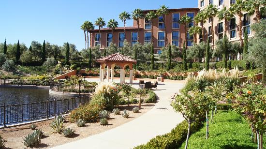 The Westin Lake Las Vegas Resort & Spa: A nice place to wander