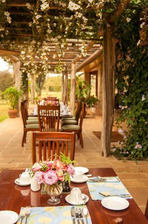 Hogmead: Breakfast on the veranda