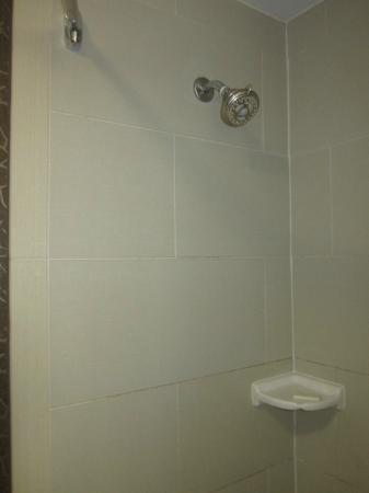 Embassy Suites by Hilton St. Louis Airport : Shower