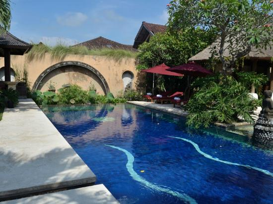 Bebek Tepi Sawah Villas & Spa: Swimming Pool
