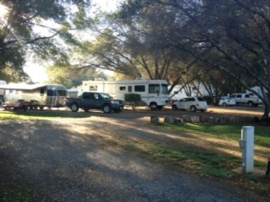 Placerville KOA: sites 44,45,46