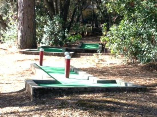 Placerville KOA: Minature golf course
