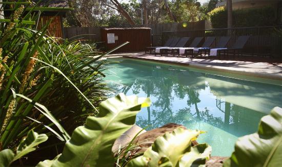 Byron Beachcomber Resort: Pool1
