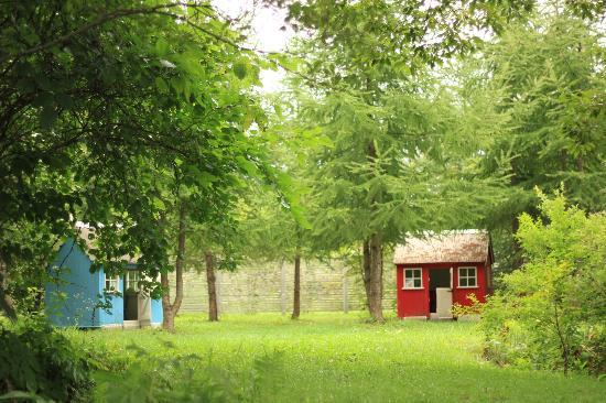 Ecorin Village: 絵本のようなお庭もあります