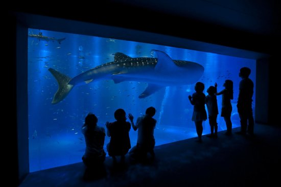 Notojima Aquarium