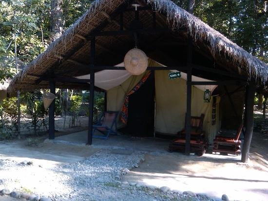 Nameri Eco Camp: The Tent