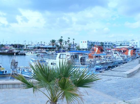 Atlantica Club Sungarden Hotel: Ayia Napa horbour