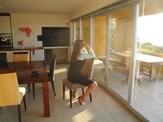 Crayfish Lodge Sea & Country Guest House : Küchen-/Wohnbereich: Whalewatching mit Fernglas auf dem Küchenstuhl