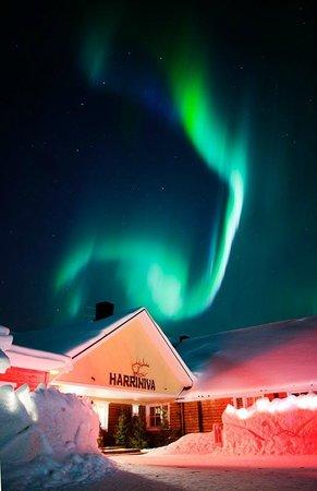 Hotel Harriniva: Harriniva by night