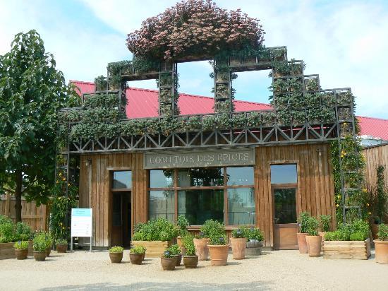 Terra Botanica : tera