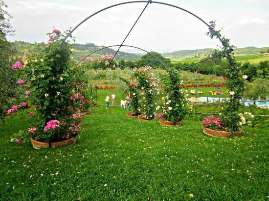 Agriturismo Ardene: Garten