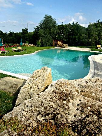Agriturismo Ardene: Pool