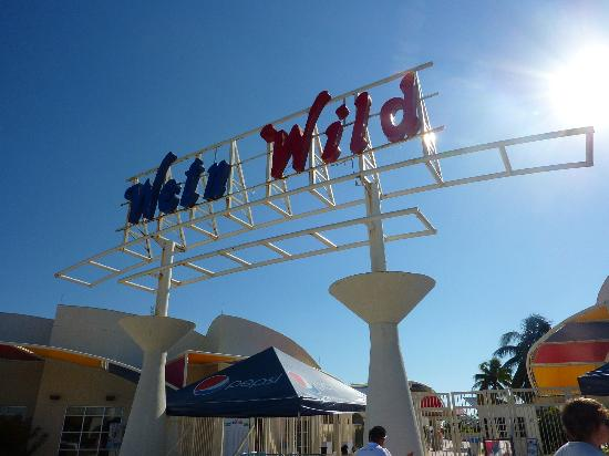 Hotel Riu Playacar: Wet and wild in cancun