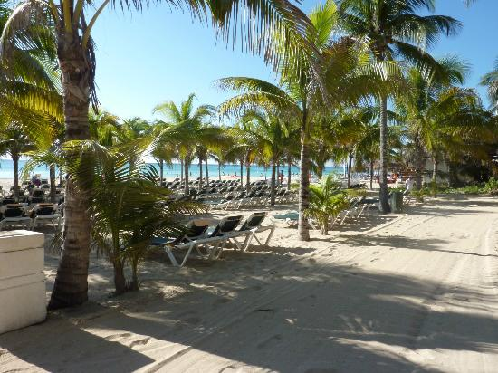 Hotel Riu Playacar: Beach