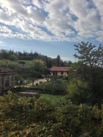 Agriturismo alle Torricelle B&B: panorama