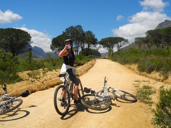 Keren's Vine: Der landschaftlich reizvolle Teil unserer geführten Radtour um Stellenbosch herum