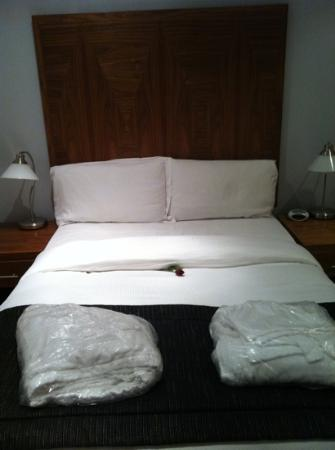 Blue Rainbow ApartHotel - Manchester Central: comfy bed with single red Rose a nice touch!