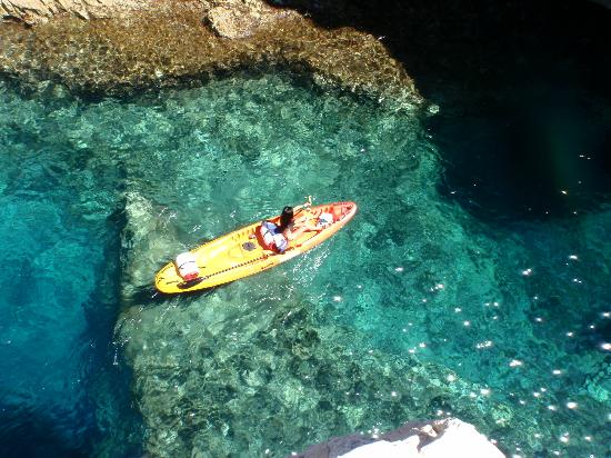 WearActive: clear waters of Vis