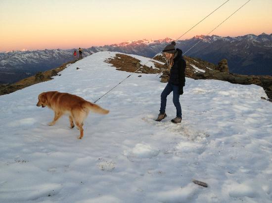 Feuerstein Nature Family Resort: Sonnenaufgangswanderung mit Spike auf dem Gipfel