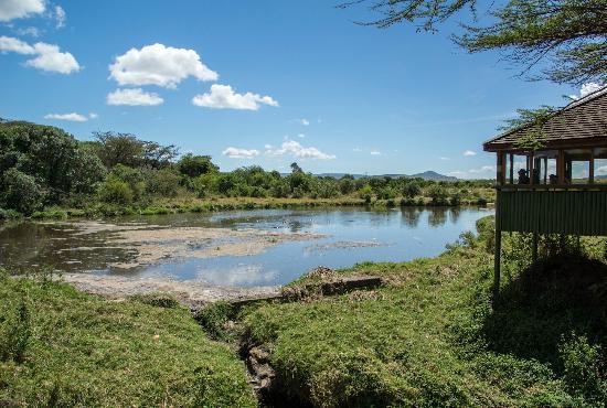 Keekorok Lodge-Sun Africa Hotels 사진