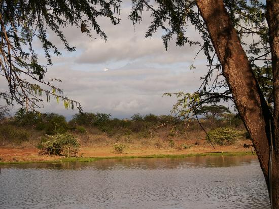Papillon Lagoon Reef : View from Tent in Tsavo West