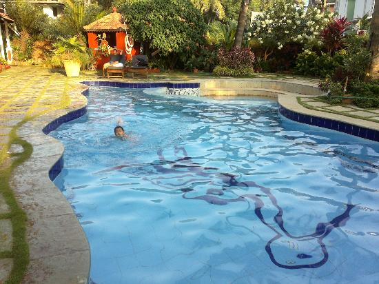 Kingstork Beach Resort: Pool side pic