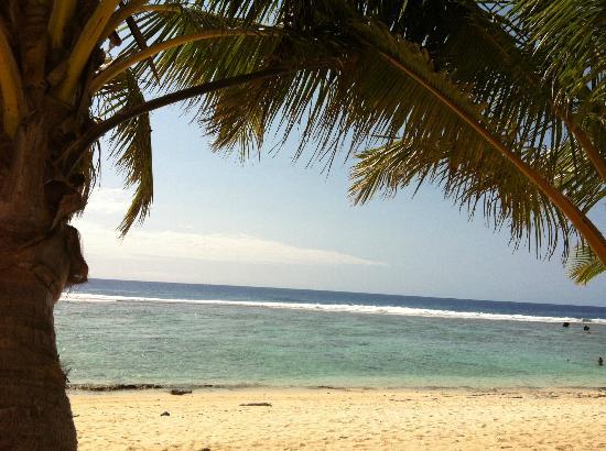 The Edgewater Resort & Spa: The beach