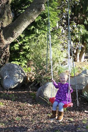 Waiorau Homestead: Swingset for Kids