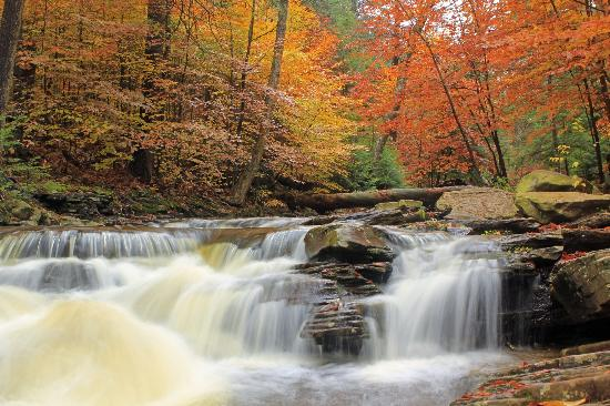 Benton, PA: Fall Foliage