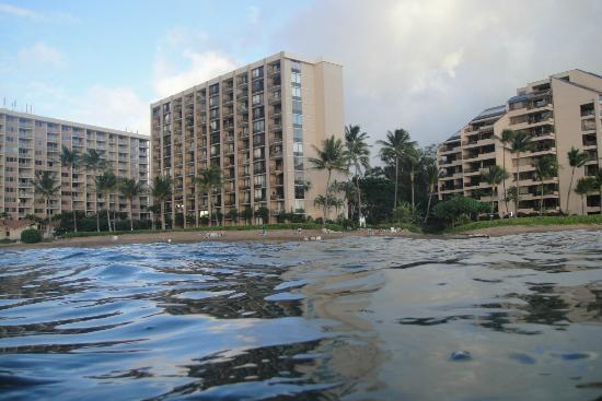 Valley Isle Resort: View from the ocean
