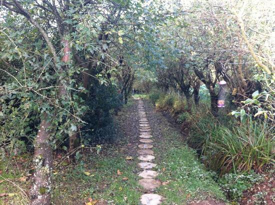 Larkhill Tipis and Yurts: Larkhill