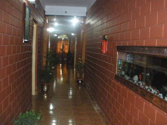 Las Palmas Munnar: Corridor 
