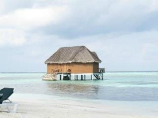Meeru Island Resort & Spa: honeymoon suite
