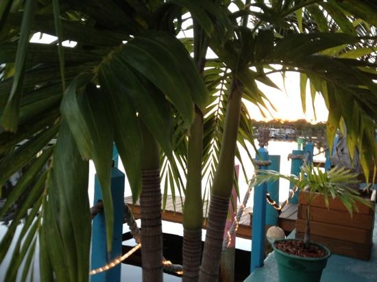 Fish House Restaurant: the view at sunset from our table.