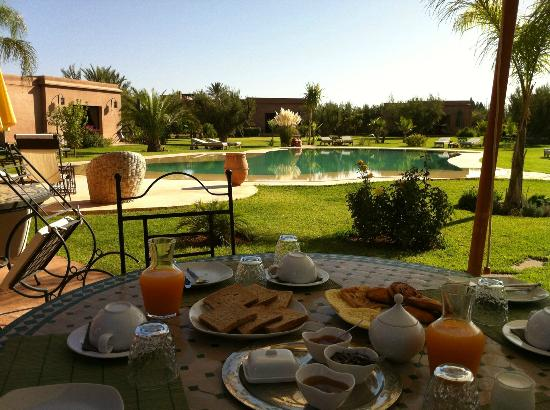 Oasis Jena: Petit Déjeuner sur la terrasse