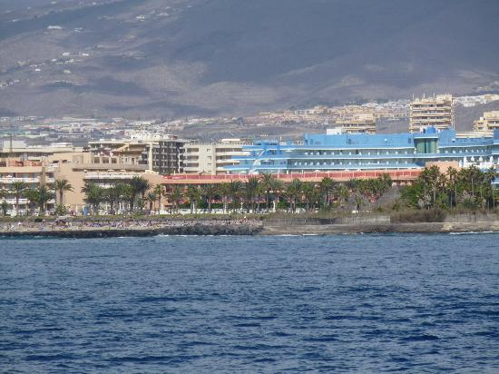 Cleopatra Palace Hotel: A view of the Mare Nostrum Resort from the Lady Shelley Catamaran