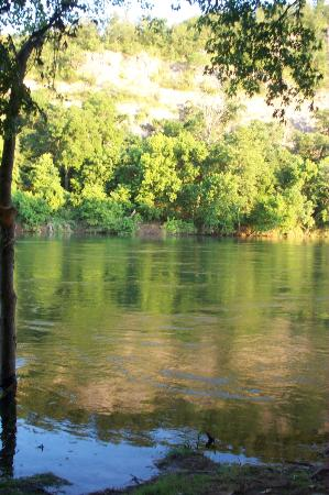 White Buffalo Resort: View of the White River and greenery from our campsite