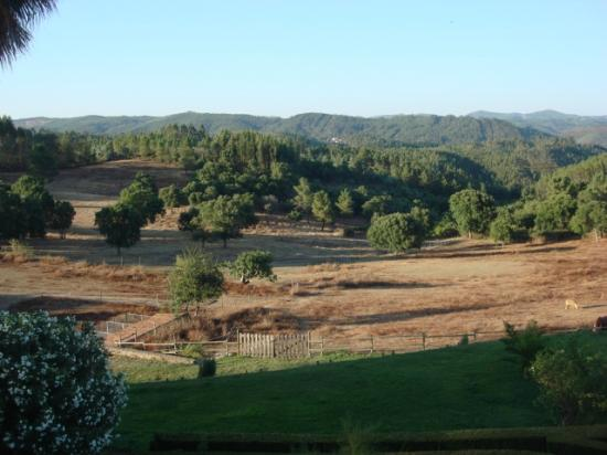 Quinta de Sao Jose dos Montes : Parque dos Cavalos