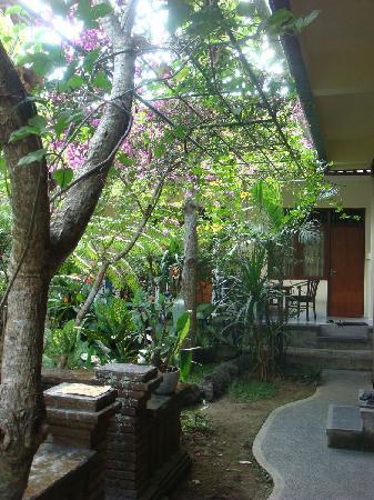 Citrus Tree Villas - Mai Malu: Mai Malu garden