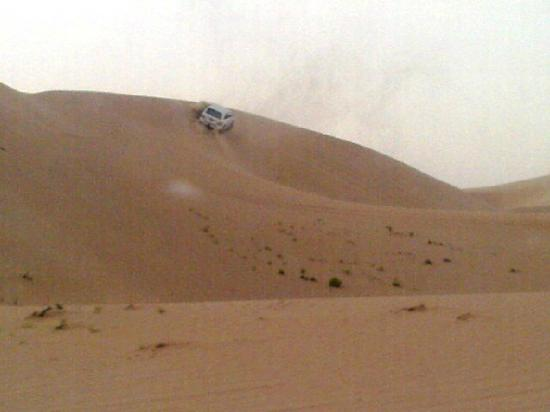 Emirates Tours and Safaris: Drive through the desert along - Dune Bashing