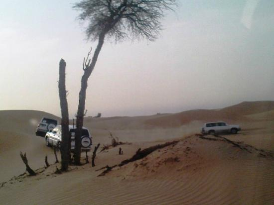 Emirates Tours and Safaris: Pick up by 4x4 wheel Drive