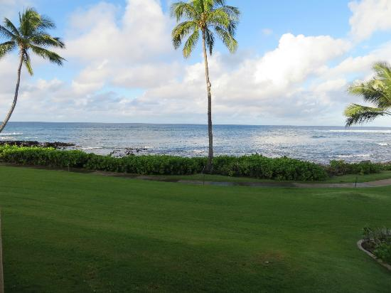 Sheraton Kauai Resort: Ground floor, ocean view room view