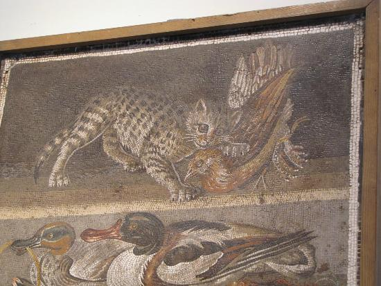 National Archaeological Museum of Naples: Pompeiians had LOLcats too!