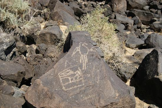 Petroglyph National Monument: Petroglyphs at the monument