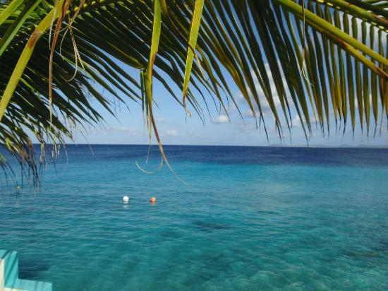 Bonaire Happy Holiday Homes: Happy days - Beautiful View